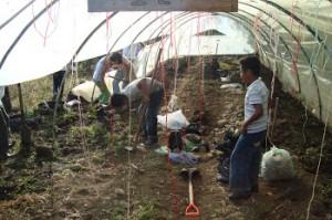 preparando_la_tierra