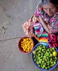 soberanía alimentaria