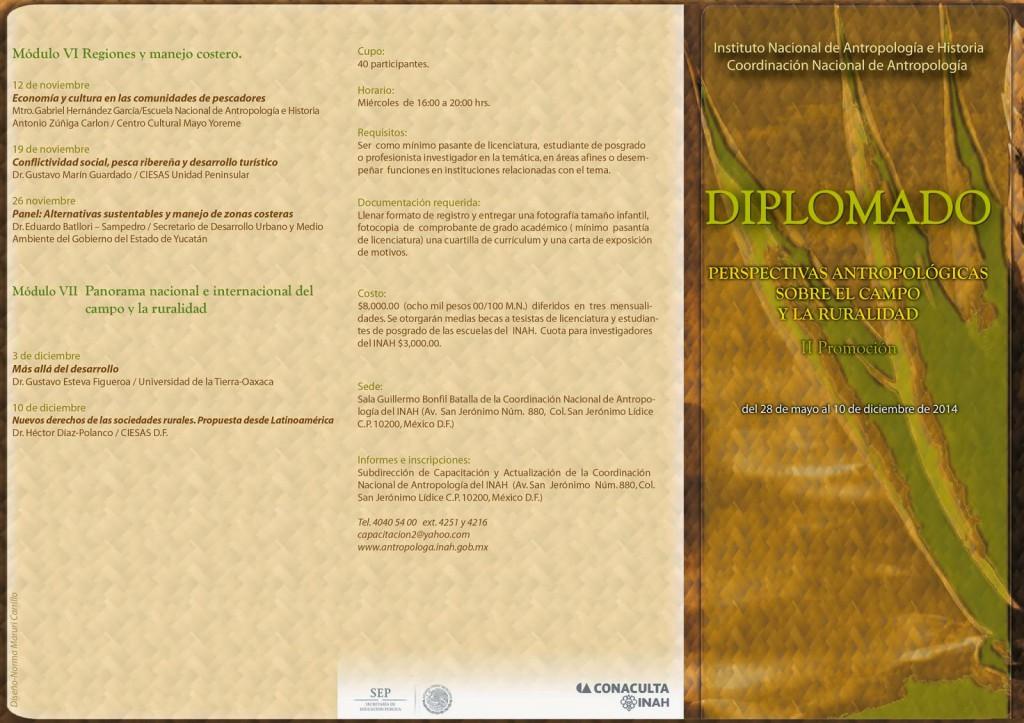 Programa Diplomado