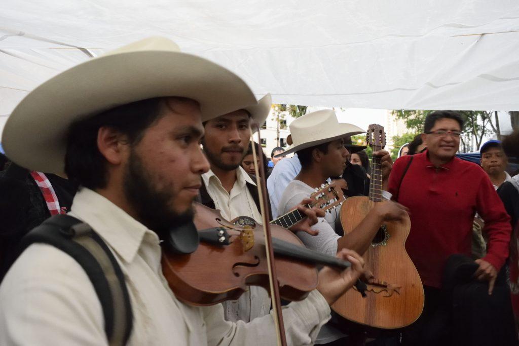 maestros fandango musicos